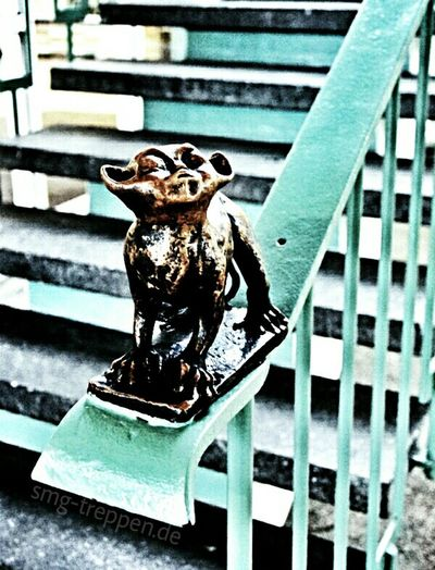 Were we found this cute monkey ? A little help www.smg-treppen.de/blog Treppen Stairs Escaleras Smg Treppen Open Edit Popular Photos Tadaa Community AMPt Community Architectureporn Taking Photos Creative Power Tierpark Berlin