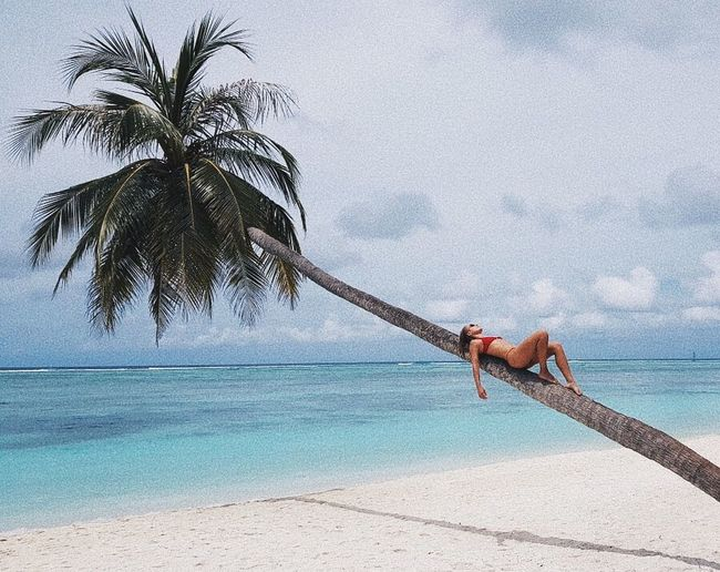Mid Adult Bikini Woman Lying On Palm Tree Trunk At Beach