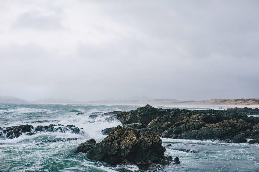 Henderson Bay, New Zealand. The Environmentalist – 2014 EyeEm Awards