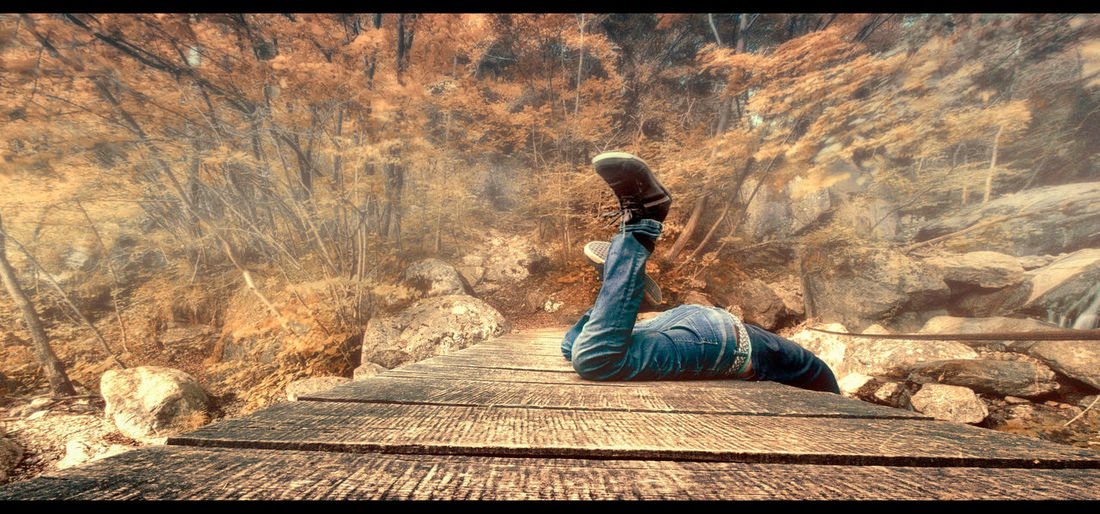 Lifestyles Real People One Person Leisure Activity Day Outdoors Wild Western Tree Autumn Wood Wooden Bridge Wooden Board Man Lying Jeans Shoes Rock Searching Mountain Mountain Road Mountain Bridge Film 21:9 EyeEmNewHere