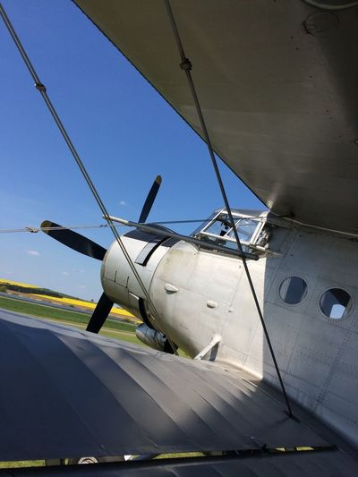 An2 Flugzeug Aircraft Nice Old Picture Ballenstedt Flying 1000hp  Radial Engine Sternmotor