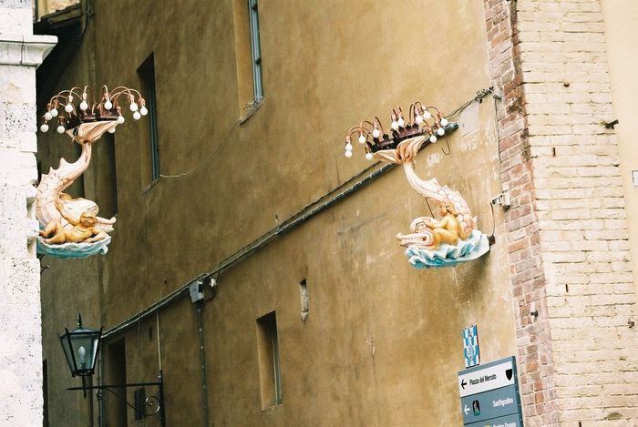 Unusual Street Lights Animal Representation Art Art And Craft Building Exterior City Composition Creativity Day Fish Representation Full Frame Italy Low Angle View Outdoor Photography Outdoors Piazza Del Campo Sculpture Siena Street Light Fittings Street_lights Tourist Attraction  Unusual Wall - Building Feature