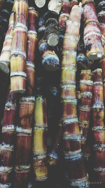 Full Frame Backgrounds No People Abundance Large Group Of Objects Close-up Mobilephotographyph Mobilephotography Mobile Photography Eyeem Philippines Lgv20photography Lgv20 Sugarcane Nature