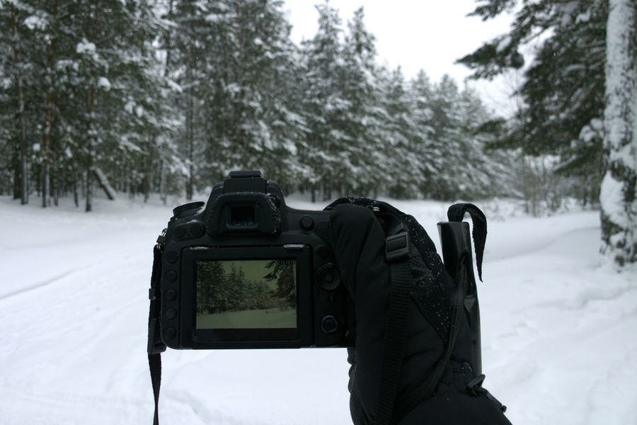 Camera Beauty In Nature Close-up Cold Temperature Day Digital Single-lens Reflex Camera Field Focus On Foreground Forest Hand Live View Nature Outdoors Photography Themes Snow Technology Tree Weather Winter