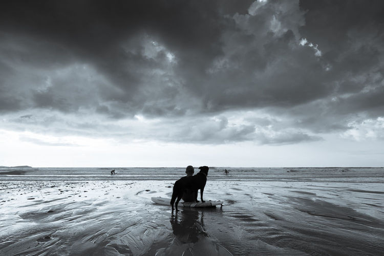 Boy with his dog after the surf Beach Black And White Dog Dramatic Sky Landscape Mans Best Friend Nature One Animal One Person Outdoors Sand Scenics Sea Seascape Sky Storm Cloud Surf Surf Board Water Wetsuit