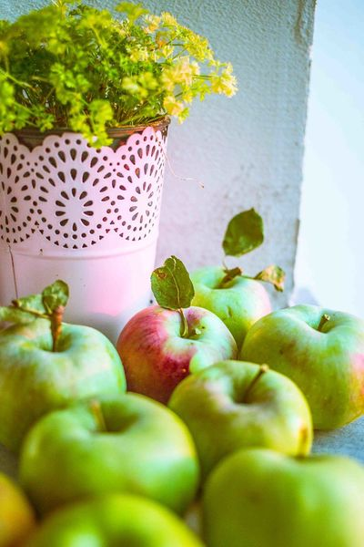 Apples Freshness Fall Beauty Green Nature Food Healthyfood 🍏🍏🍎 EyeEm Nature Lover Fall Colors Herbs