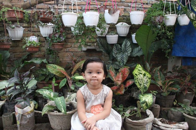 Portrait of cute girl in potted plants