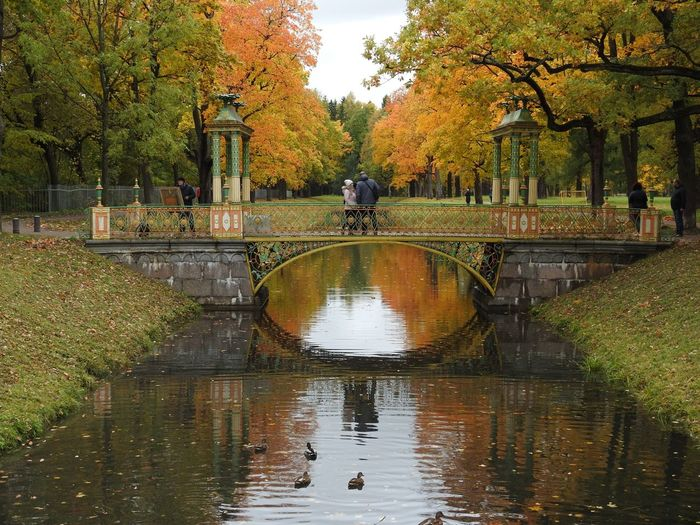 Couple standing on footbridge over lake in park during autumn