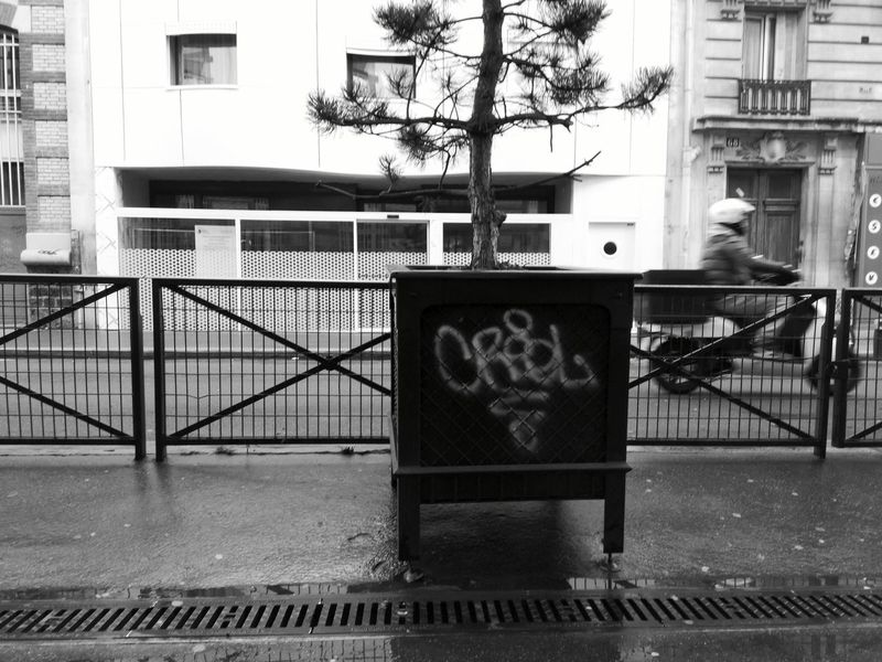 Showcase March Blackandwhite Streetphotography Scooter Macadam Lone Tree Graffiti Alone White Building Metal Grate Grid Handrail  Up Close Street Photography Showing Imperfection The Street Photographer - 2016 EyeEm Awards The Following