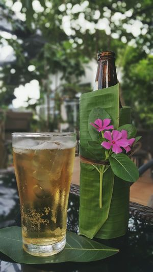 My Leo Beer all dressed up nicely this eveing.. . Chill Enjoy Life I Love Beer Lovely Cold Beer