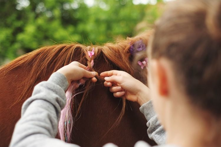 Rear view of woman braiding horse hair