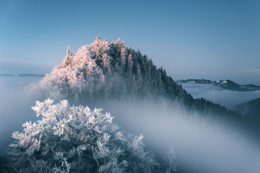 Kissed by the freezing fog Frozen The Week on EyeEm Trees Beauty In Nature Belchenflue Clear Sky Cold Temperature Day Fog Jura Long Exposure Mist Mountain Mountain Range Nature No People Outdoors Scenics Sky Switzerland Tranquil Scene Tranquility Tree Water Winter