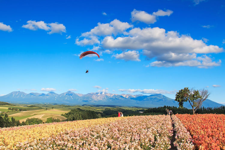 Scenic view of paraglider above field against blue sky