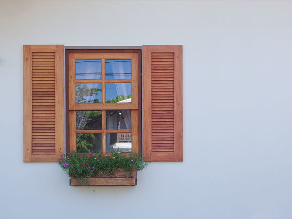 Window Plant Architecture Wall - Building Feature Built Structure Building House Building Exterior No People Potted Plant Day Wood - Material Nature Growth Outdoors Glass - Material Window Frame Shutter Reflection Residential District Window Box Flower Pot Houseplant Copy Space Exterior