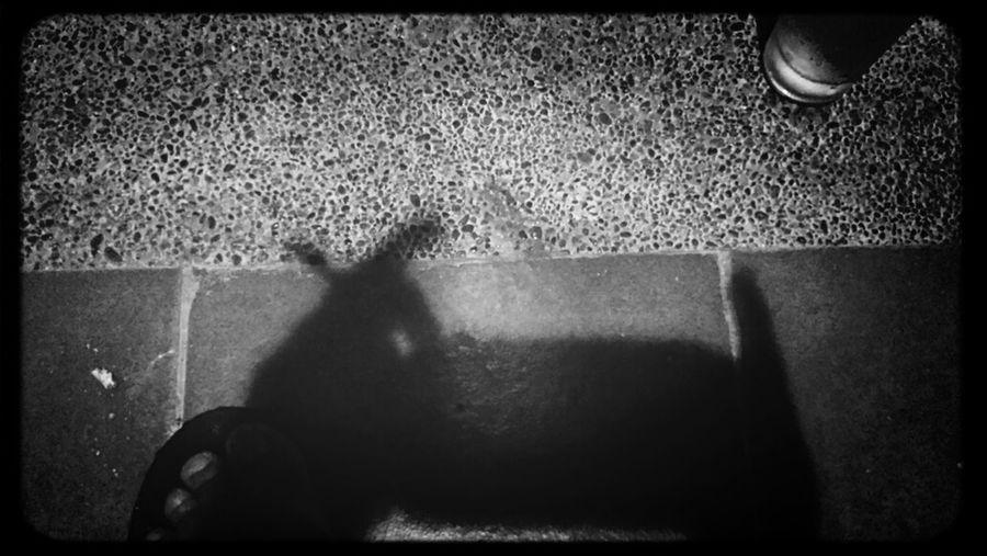 shadows That's Me