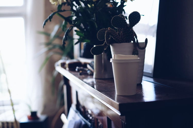 Disposable drinking glass by potted plants on table at home