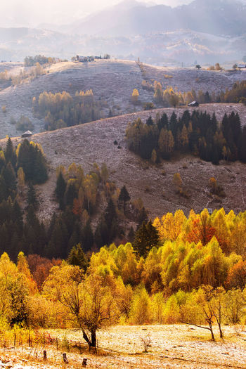 Scenic view of landscape during autumn