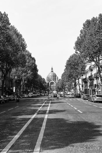 Black & White Black And White Black And White Photography Blackandwhite Blue City Clear Sky Day Diminishing Perspective Empty Growth Nature No People Outdoors Paris Road Sky The Way Forward Tourism Travel Destinations Tree Tree Lined Treelined Vanishing Point