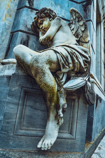 A day in the land of the dead Baby Textures and Surfaces Youth Angel Angel Statue Angel Wings Architecture Art And Craft Buenosaires Creativity High Angle View Livestock No People Outdoors Representation Sculpture Sleeping Statue Stone