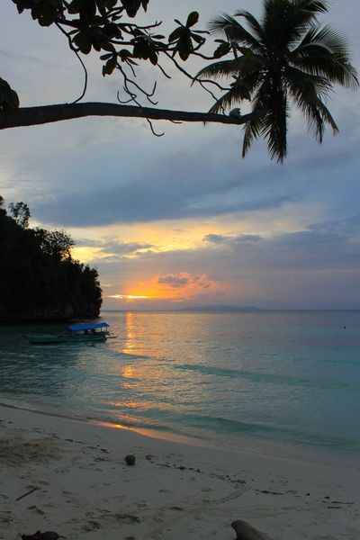 INDONESIA Tropical Paradise Beach Beauty In Nature Cloud - Sky Day Horizon Over Water Idyllic Nature No People Outdoors Palm Tree Paradise Beach Sand Scenics Sea Shore Silhouette Sky Sunset Tranquil Scene Tranquility Tree Water