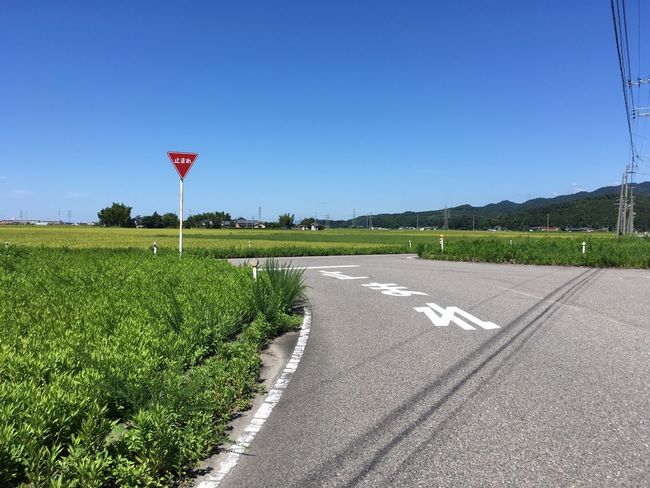 Sign Stop Sunny Day Walking Around Nobody No Cars  Paddy Field Hometown IPhoneography Japan Photography The Scenery That Tom Saw No Edit/no Filter Tomの見た世界 Japan