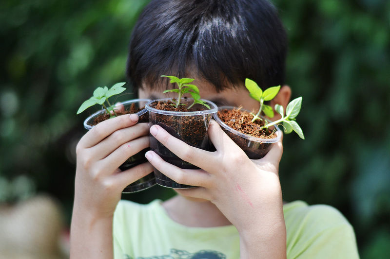 Close-Up Of Boy Holding Seedlings