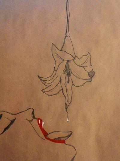 And full version Drawing Skribbles Sketch My Art