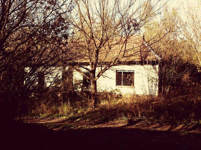 Abandoned House Old House Randomshot