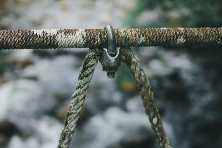 Close-up of rope on rusty metal fence