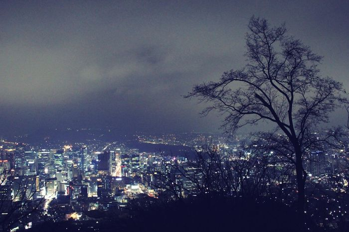 Korea Soul City Night Lights Full Of Life Cold But Beautiful Nature ❄️❄️🌬🌬