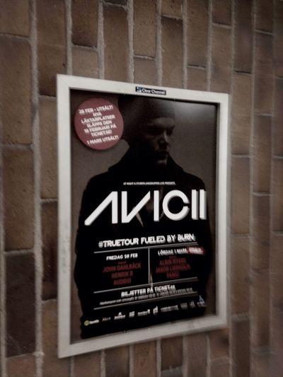 True Tour Avicii Concert