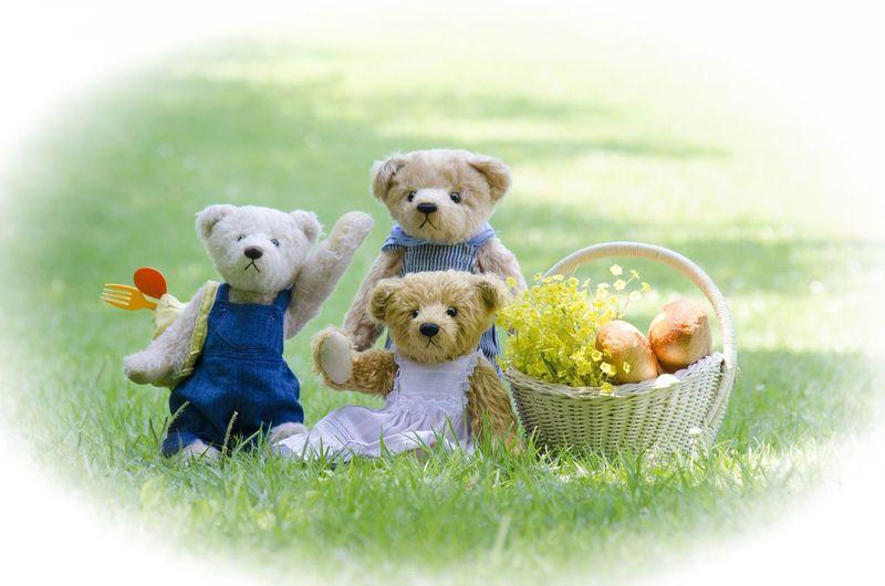 Teddy bears go