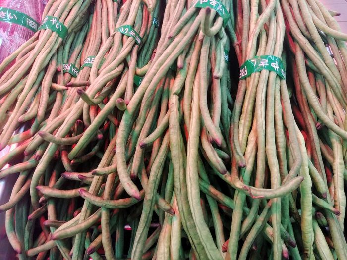 fresh long beans Long Bean Food Fresh Radish Backyard Carrot Home Organic Diet Plantation Farm Garden Vitamins Vegetable Seeds Background Vegan Green Agriculture Full Frame Close-up Farmer Market Farmland Greenery Serving Size Raw Root Vegetable