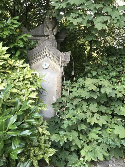 Close-up of statue against plants in yard