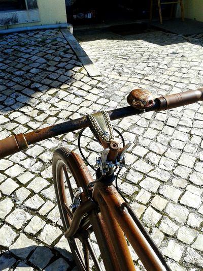 My New Bicycle Rust Cityrider BikeART