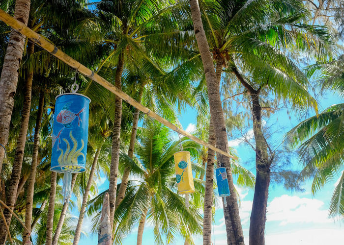 Green Color Holiday Philippines Relaxing Summertime Travel Tree Vacations Beach Beauty In Nature Blue Blue Sky Boracay Outdoors Sky Summer Travel Destinations