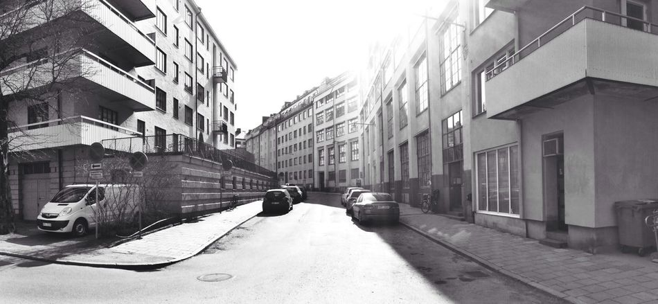 Check This Out Hangover Sunny Day Blackandwhite
