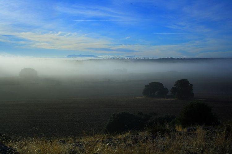 Astronomy Fog Dawn Blue Rural Scene Sky Landscape Grass Cloud - Sky Tranquil Scene Idyllic Tranquility Non-urban Scene