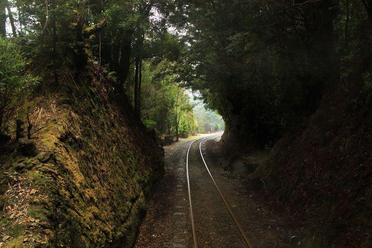 Hobart Beauty