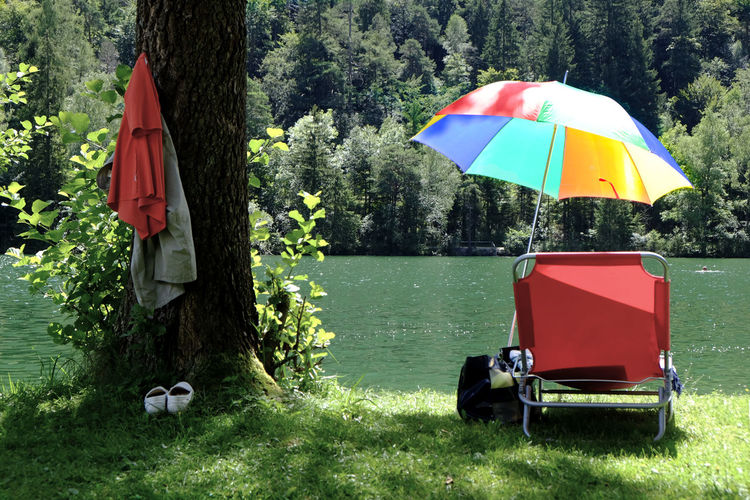 Deck Chair And Umbrella Against River In Forest