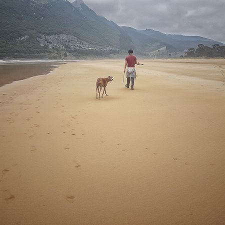 Playadeoriñon Cantabria Domestic Animals Pets One Animal Canine Nature Walking Beach One Person Real People Canon Water EyeEmNewHere Horizon