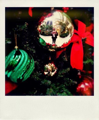 Polamatic Polaroid Christmas Christmas Tree