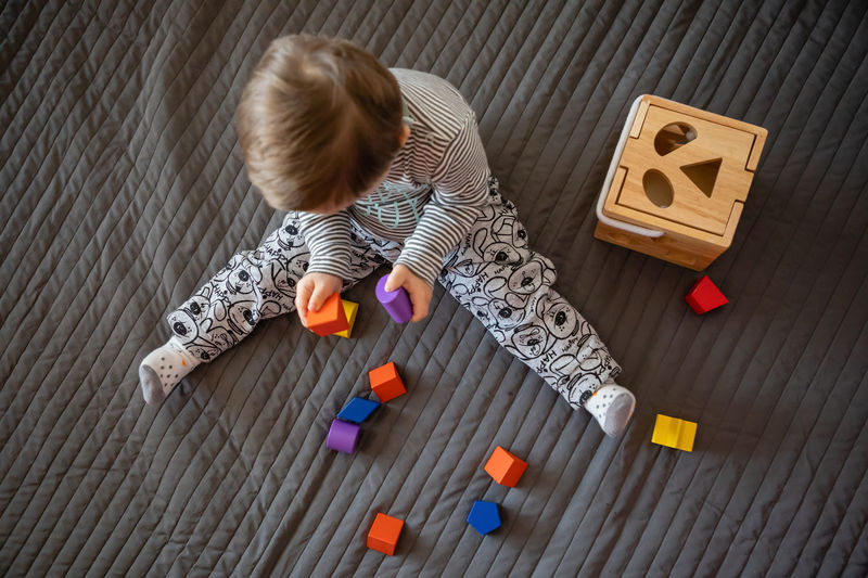 Babyboy Baby Blond Hair Child Childhood Cute Directly Above Down Syndrome Flooring Full Length Hair High Angle View Indoors  Innocence Mental Health  Multi Colored Offspring One Person Playing Toy Toy Block Wood Young