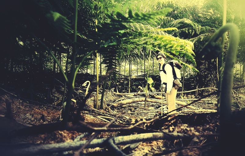 Hiking the