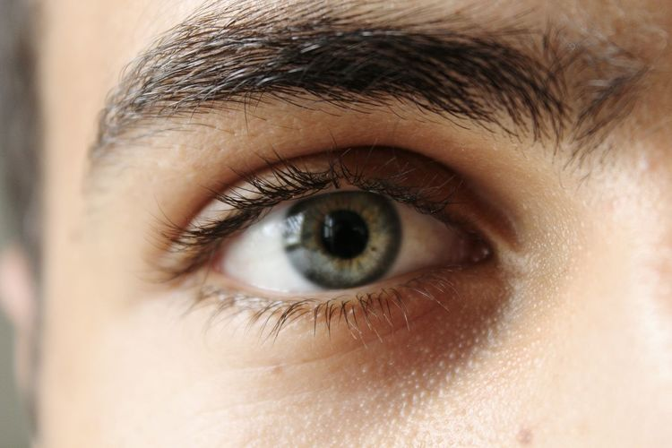 Cropped image of man eye