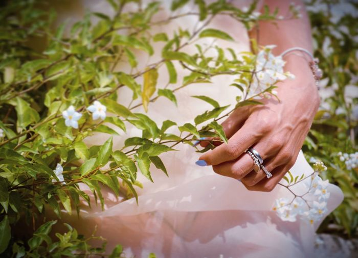 Flowers and Jewelry Human Hand Human Body Part Hand One Person Ring Adult Women Body Part Celebration Event Holding Nature Real People Plant Jewelry Wedding Bride Newlywed Leaf Lifestyles