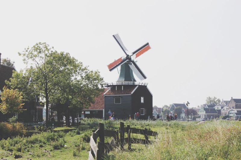 EyeEm Nature Lover Dutch Going Dutch Taking Photos