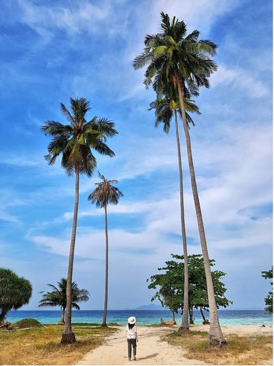 EyeEmNewHere Thailand Island Going Remote Tree Palm Tree Beach Tree Trunk Water Blue Sky Cloud - Sky Landscape Coconut Palm Tree Tropical Tree Tropical Climate EyeEmNewHere