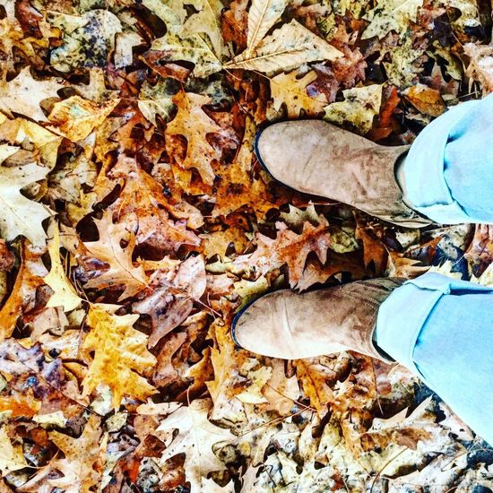 Leaves Autumn Leaf Leaves One Person Close-up Nature Human Leg Standing Outdoors Lifestyles Human Body Part Shoes Nikongirl Photo Photography Photographer