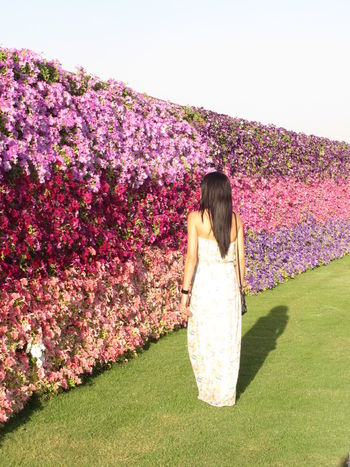 Woman walking through the garden in Dubai Dubai Miracle Garden Adult Beauty In Nature Day Flower Fragility Freshness Full Length Grass Growth Leisure Activity Nature One Person One Woman Only Only Women Outdoors Real People Rear View Springtime Standing Tree Women Young Adult Young Women